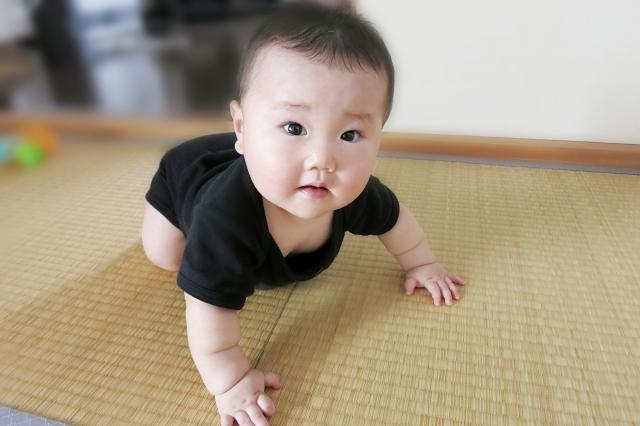 畳の正しいお掃除のやり方!気持ち良い「い草」をキープする方法