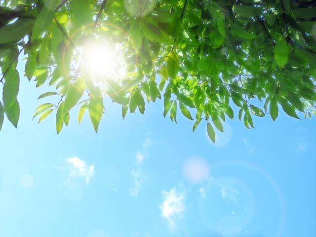 日焼けするのは、思ってるより危険!赤ちゃんの紫外線対策5つ
