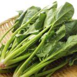 葉酸が豊富に含まれる食べ物まとめ